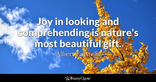 Most Beautiful Images With Quotes Best of Most Beautiful Quotes BrainyQuote