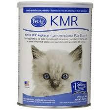kmr kitten milk replacer always be prepared