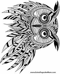 Free Printable Adult Coloring Pages Owl Coloring Pages Coloring