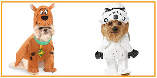 Spirit Halloween Size Chart 35 Funny Dog And Puppy Costumes For 2019 Cute Pet