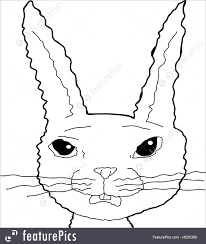 outline of bunny illustration of scared bunny cartoon outline
