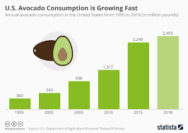 Avocado Price Chart 2018 Chart Millennials Not Alone In Driving Up U S Avocado