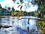 imagem de Guarantã do Norte Mato Grosso n-12