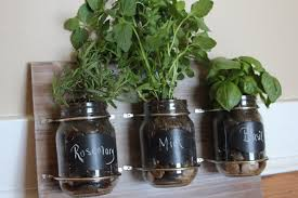 Small Picture Delighful Indoor Kitchen Herb Garden For Design Inspiration