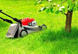 lawn and garden s garden mower and tools decor show parts supplies center s lawn and garden s