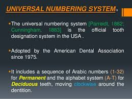 Teeth Numbers Chart Usa American Dental Association Tooth Numbering Chart