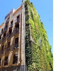 outdoor vertical garden at the caixaforum art gallery in madrid spain