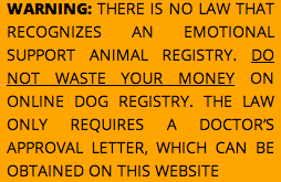 How To Get A Doctors Note For A Pet - Tier.brianhenry.co