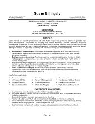 how to build a federal resume federal resume template