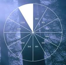 Where Is Chiron In My Chart Natal Chiron In The 10th House Astrology Astrology