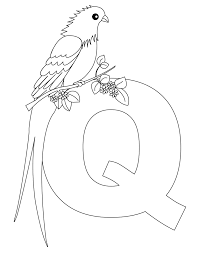 Small Picture Animal Alphabet Letter Q for Queen Whydah Heres a simple