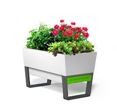 garden planters. Amazon.com : GlowPear Urban Garden Self-Watering Planter \u0026 Outdoor Planters
