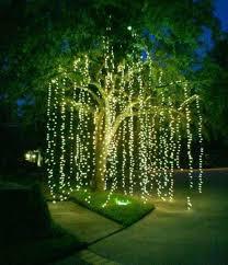 Patio Lighting Ideas And Light Up Palm Trees  Christmas Lights Christmas Lights In Backyard