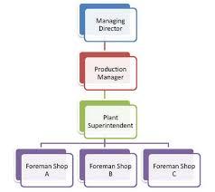 Line And Staff Authority Management Guru Management Guru