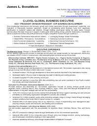 Business Consultant Resume Sample Engineering Consultant Resume