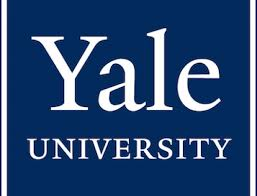 yale video essay questions admit mba testimonial admitted to nyu stern yale som