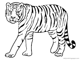 Small Picture Coloring Pages Animals Tiger Coloring Pages