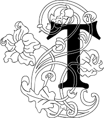 白黒モノクロの花文字イラストフリー素材英語の大文字no981花