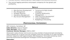 Sample Resume Pdf File Examples Of Professional Resumes Lovely Sales ...