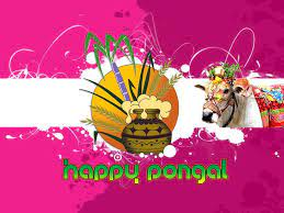 Pongal Wallpapers - HD WALLPAPERS