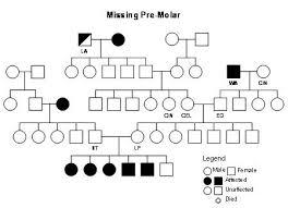 Pedigree Chart Key Pedigree Analysis Tuftsbg2007 Vin