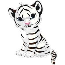 baby white tigers drawing. Brilliant White White Tigers Tigers And Cubs On Pinterest  Tigr Tiger Tiger  Animal In Baby Drawing N