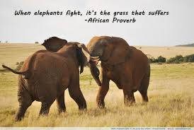 Elephant Quote Quote Number 616764 Picture Quotes
