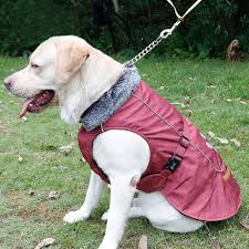 picture of kuoser outdoor cotton thickened fleece lining 100 waterproof dog vest winter coat warm