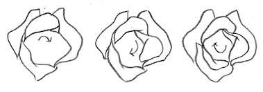 Disegnare Una Rosa Arts Creation