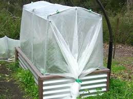 vegetable garden netting cover row covers frames for insect and 2