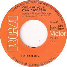 Elvis Presley  Elvis Gold Records Volume 5  Vinyl LPElvis Clean Up Your Own Backyard