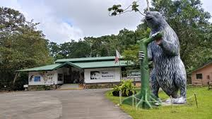 <b>Sloth</b> Sanctuary of Costa Rica — Since 1992, the first advocate for ...