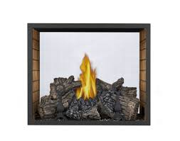 napoleon 81 high definition see through direct vent fireplace