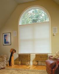 ... Awesome Window Accessories Using Insulated Roman Blinds : Cool Single Arch  Window Decoration In Living Room ...