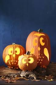 50 seriously y pumpkin carving ideas