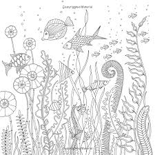 lost ocean an inky adventure and coloring book johanna basford