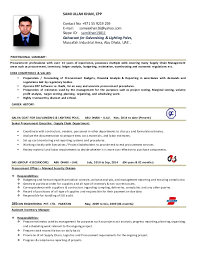 procurement executive cv .