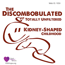 the discombobulated yet ldquo totally unfiltered kidney shaped essay president s pick 14th annual essay contest