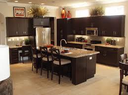 dark wood modern kitchen cabinets. Kitchen Remodels, OLYMPUS DIGITAL CAMERA: Modern Remodel Black Dark Wood Cabinets