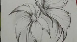 Disegni A Matita Di Fiori Facili Per Lispirazione Disegno Arte