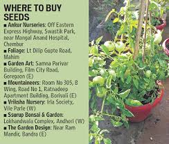 Small Picture Sow good Tips to build your own kitchen garden lifestyle
