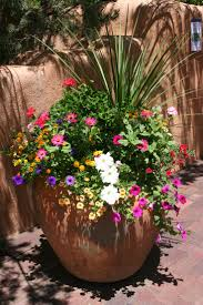 Container Gardens For Sun | Home Outdoor Decoration
