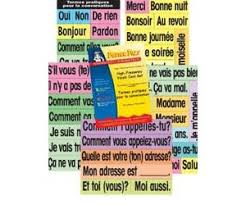 Poster Pals High Frequency Vocab Cards