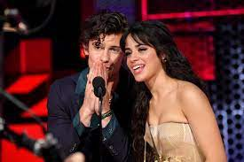 Camila Cabello Trolls Shawn Mendes's ...