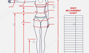 Body Measurement And Weight Loss Chart Muffins Vs The