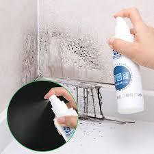 quickly remove mold rapid