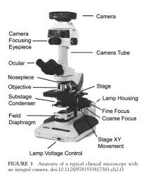 Parts Of The Microscope Optical Compound Microscope Parts Medical Laboratory Science