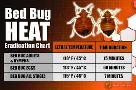 What Temperatures Kill Bed Bugs In Home Conditions