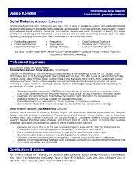 Account Representative Sample Resume 19 Marketing Executive Learn