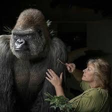 Wendy Christensen - Wildlife Reflections - Home | Facebook